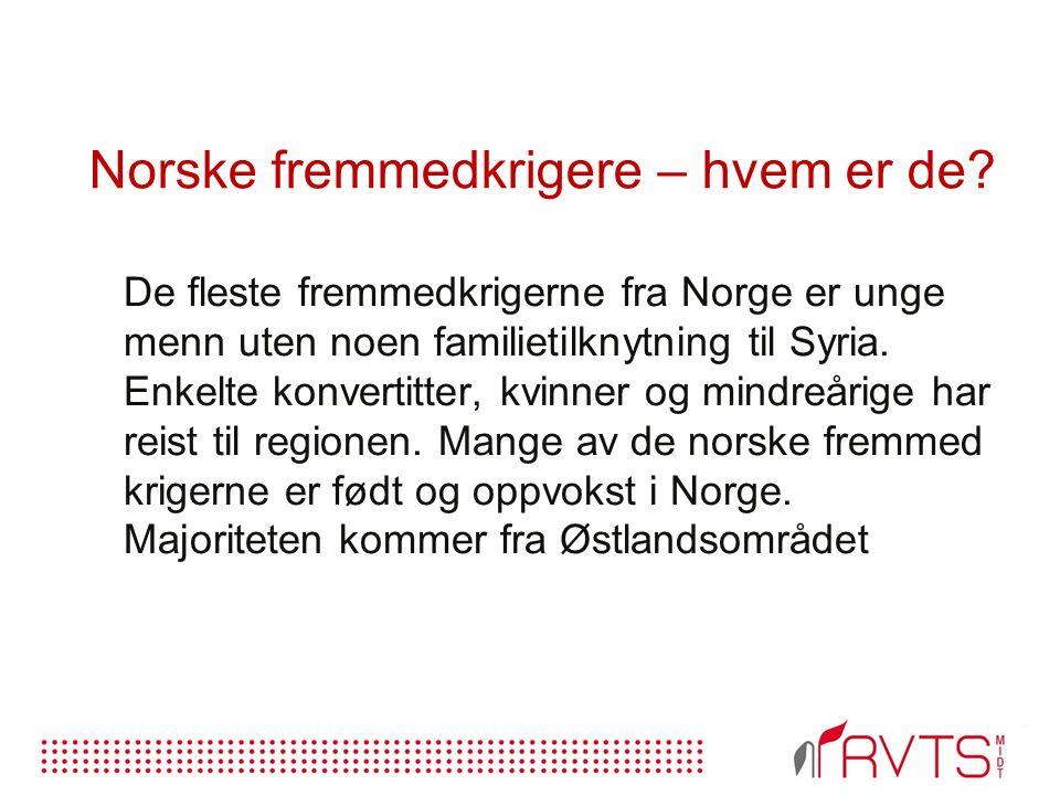 Norske fremmedkrigere – hvem er de.