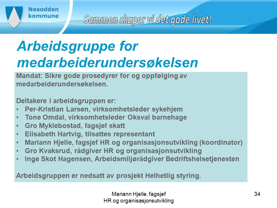 Mariann Hjelle, fagsjef HR og organisasjonsutvikling Arbeidsgruppe for medarbeiderundersøkelsen 34 Mandat: Sikre gode prosedyrer for og oppfølging av medarbeiderundersøkelsen.