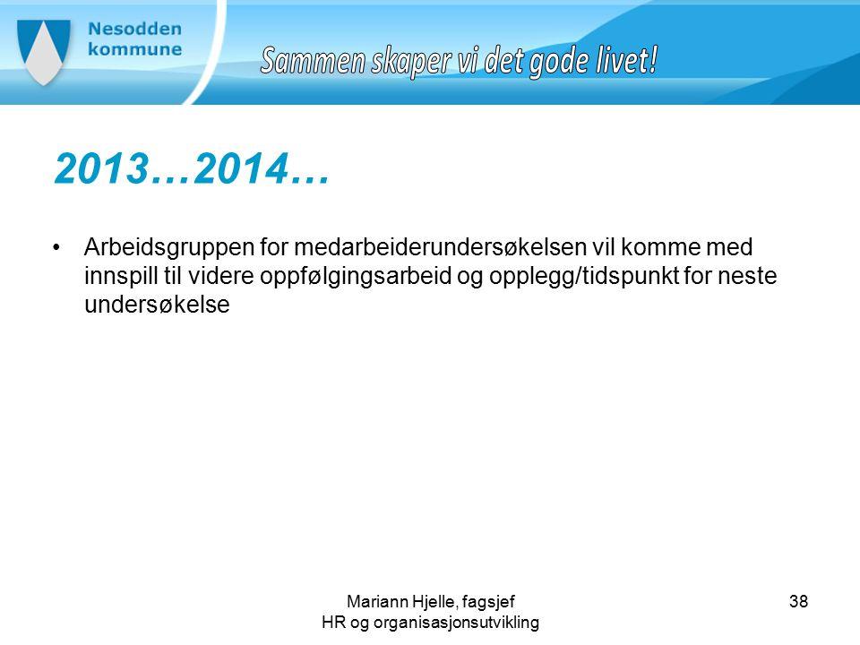Mariann Hjelle, fagsjef HR og organisasjonsutvikling 2013…2014… Arbeidsgruppen for medarbeiderundersøkelsen vil komme med innspill til videre oppfølgingsarbeid og opplegg/tidspunkt for neste undersøkelse 38