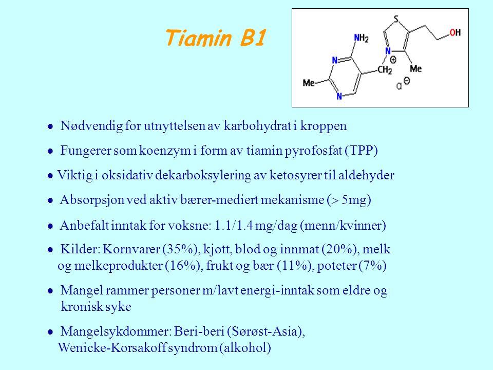 Tiamin B1  Nødvendig for utnyttelsen av karbohydrat i kroppen  Fungerer som koenzym i form av tiamin pyrofosfat (TPP)  Viktig i oksidativ dekarboks
