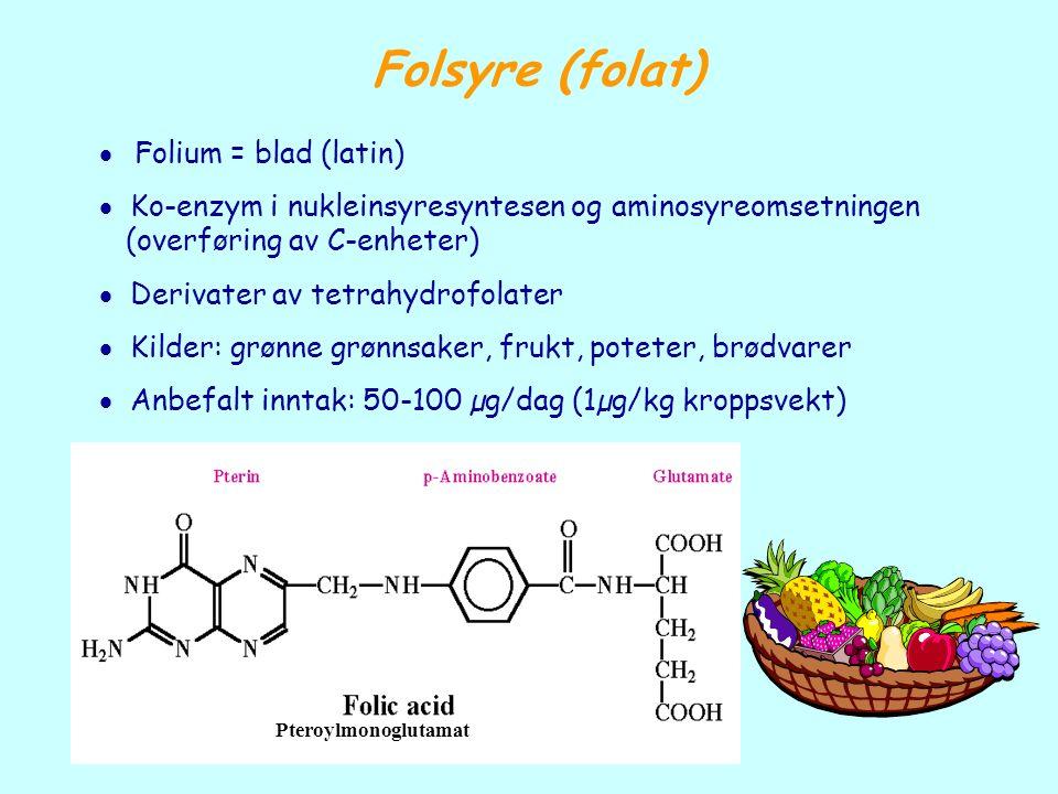 Folsyre (folat) Pteroylmonoglutamat  Folium = blad (latin)  Ko-enzym i nukleinsyresyntesen og aminosyreomsetningen (overføring av C-enheter)  Deriv