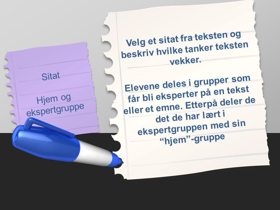 Sitat Hjem og ekspertgruppe Velg et sitat fra teksten og beskriv hvilke tanker teksten vekker.
