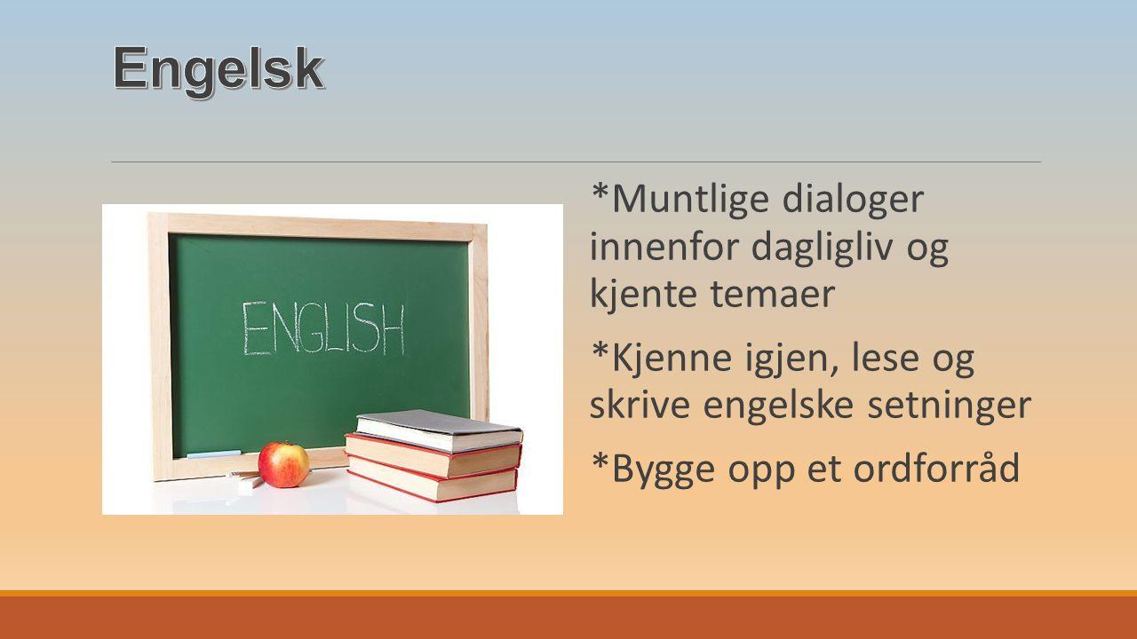 *Muntlige dialoger innenfor dagligliv og kjente temaer *Kjenne igjen, lese og skrive engelske setninger *Bygge opp et ordforråd