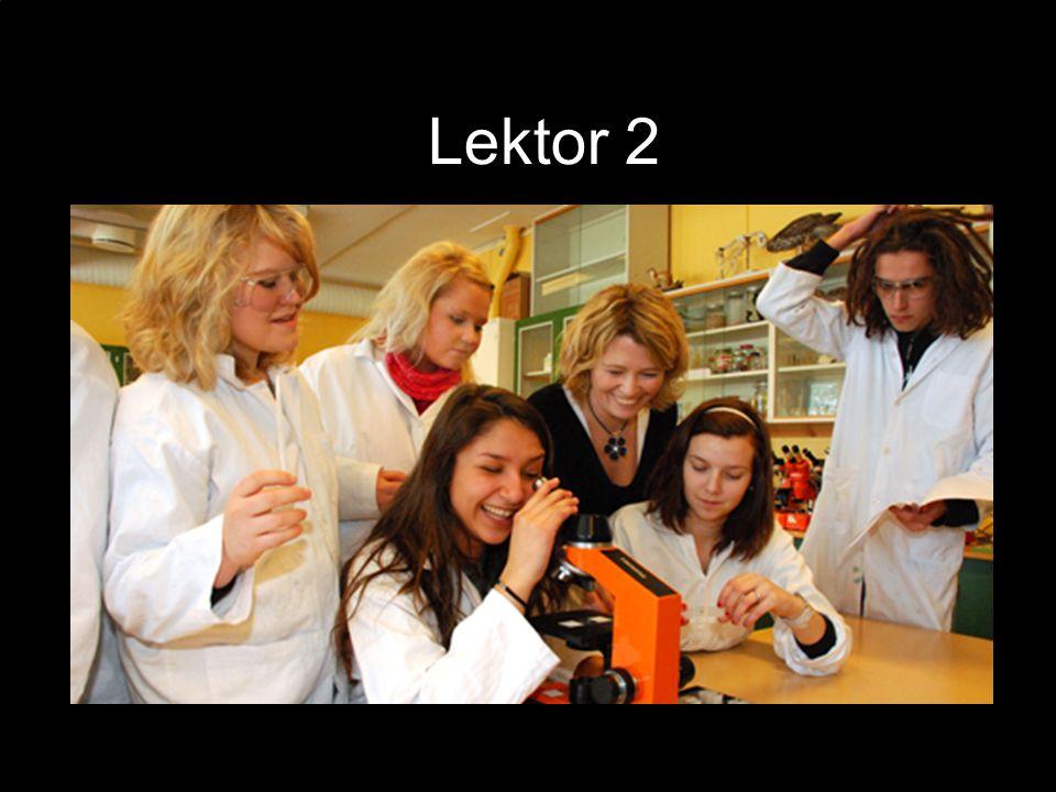 Lektor 2