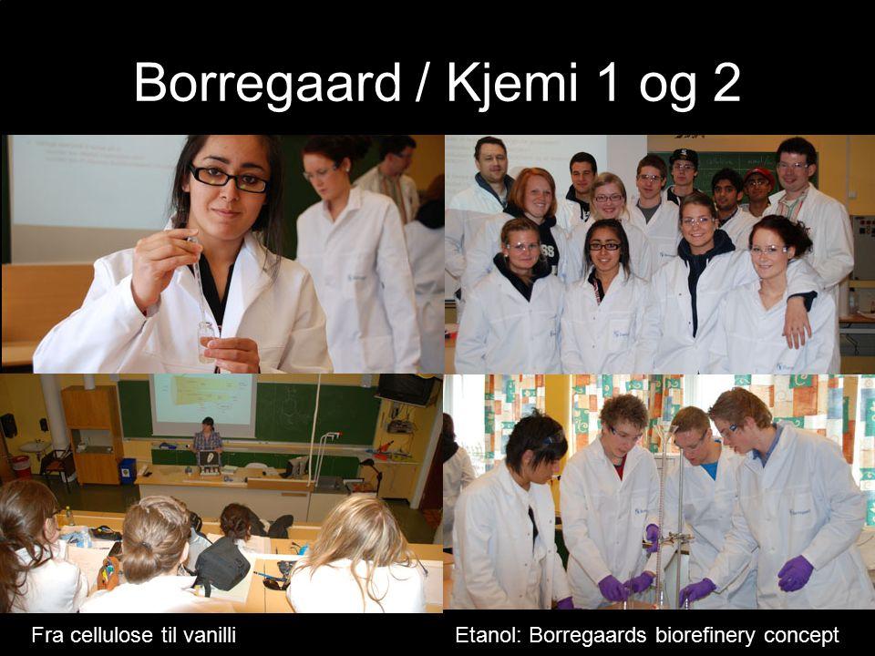 Borregaard / Kjemi 1 og 2 Fra cellulose til vanilliEtanol: Borregaards biorefinery concept