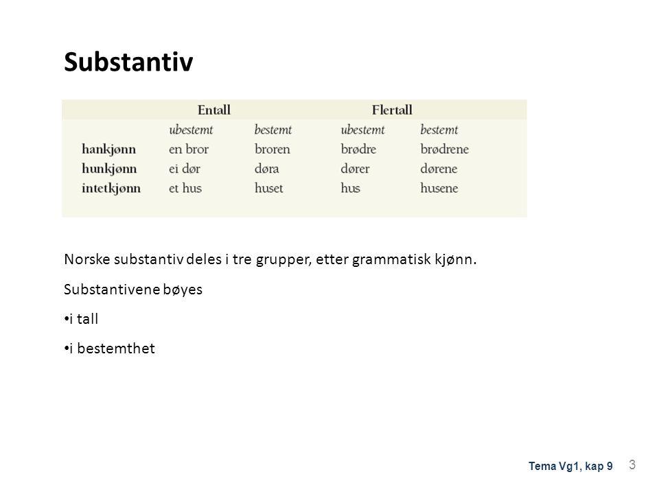 Substantiv Norske substantiv deles i tre grupper, etter grammatisk kjønn. Substantivene bøyes i tall i bestemthet 3 Tema Vg1, kap 9