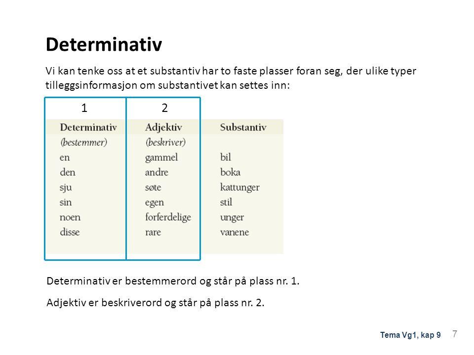 Determinativ Vi kan tenke oss at et substantiv har to faste plasser foran seg, der ulike typer tilleggsinformasjon om substantivet kan settes inn: 1 2 Determinativ er bestemmerord og står på plass nr.