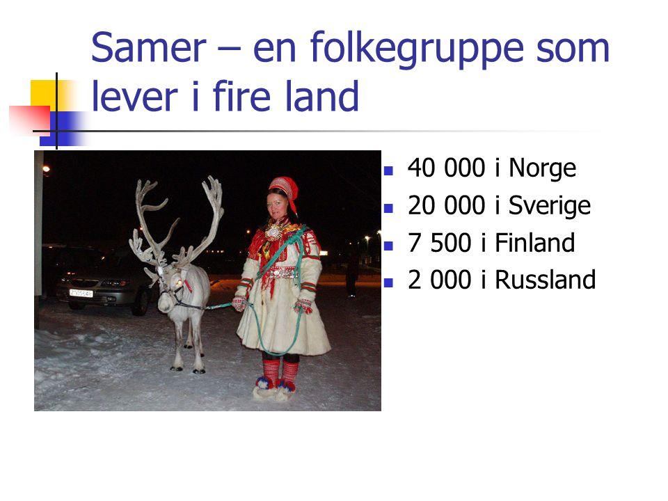 Samer – en folkegruppe som lever i fire land 40 000 i Norge 20 000 i Sverige 7 500 i Finland 2 000 i Russland
