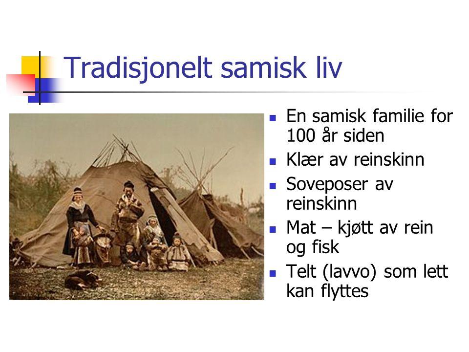 Tradisjonelt samisk liv En samisk familie for 100 år siden Klær av reinskinn Soveposer av reinskinn Mat – kjøtt av rein og fisk Telt (lavvo) som lett