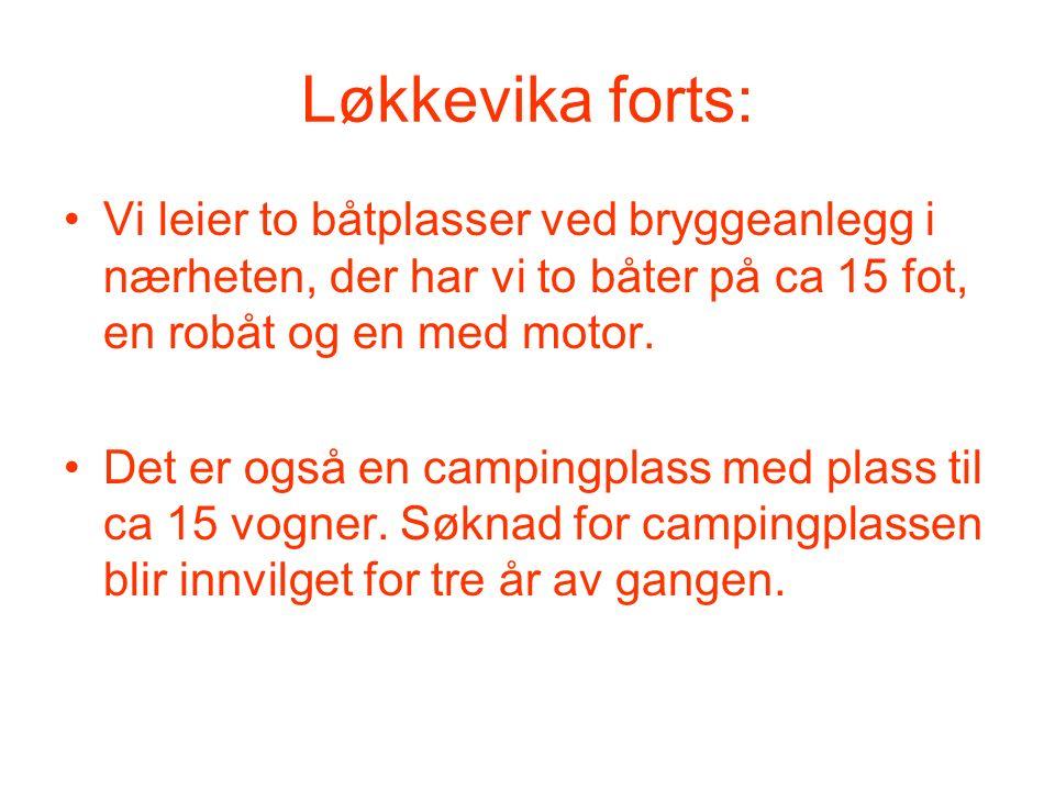 Løkkevika forts: Vi leier to båtplasser ved bryggeanlegg i nærheten, der har vi to båter på ca 15 fot, en robåt og en med motor. Det er også en campin