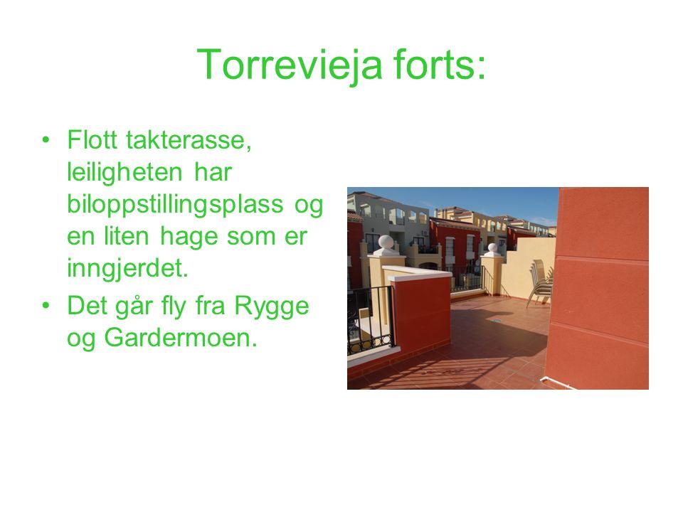 Torrevieja forts: Flott takterasse, leiligheten har biloppstillingsplass og en liten hage som er inngjerdet. Det går fly fra Rygge og Gardermoen.