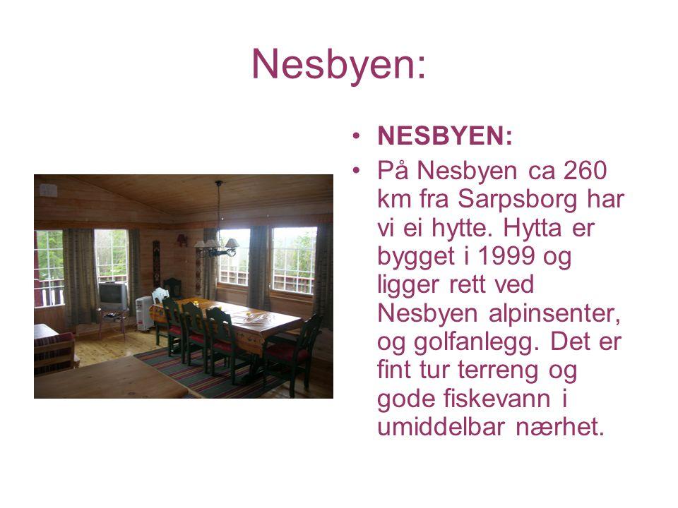Nesbyen: NESBYEN: På Nesbyen ca 260 km fra Sarpsborg har vi ei hytte. Hytta er bygget i 1999 og ligger rett ved Nesbyen alpinsenter, og golfanlegg. De