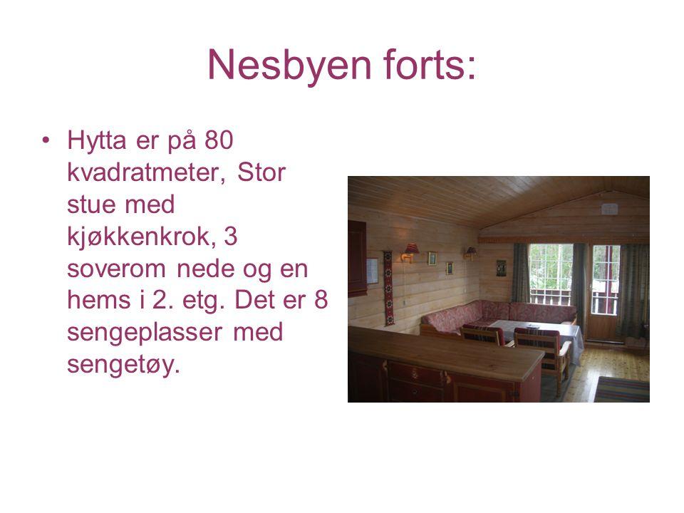 Nesbyen forts: Hytta er på 80 kvadratmeter, Stor stue med kjøkkenkrok, 3 soverom nede og en hems i 2. etg. Det er 8 sengeplasser med sengetøy.