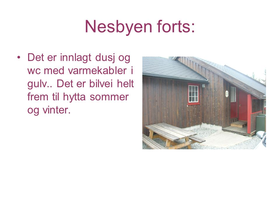 Nesbyen forts: Hytta er utstyrt med kjøleskap, komfyr, oppvaskmaskin, kaffetrakter og radio med CD/kasettspiller.