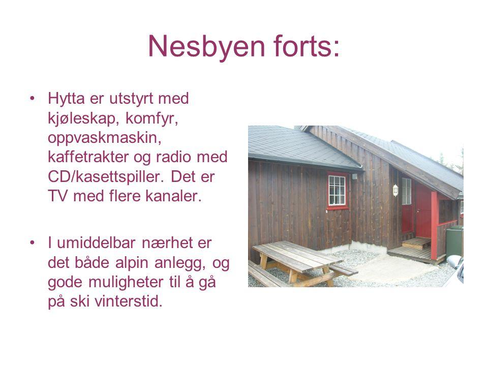 Nesbyen forts: Hytta er utstyrt med kjøleskap, komfyr, oppvaskmaskin, kaffetrakter og radio med CD/kasettspiller. Det er TV med flere kanaler. I umidd