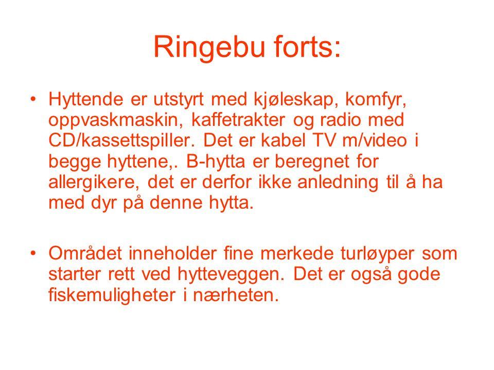 Ringebu forts: Hyttende er utstyrt med kjøleskap, komfyr, oppvaskmaskin, kaffetrakter og radio med CD/kassettspiller. Det er kabel TV m/video i begge
