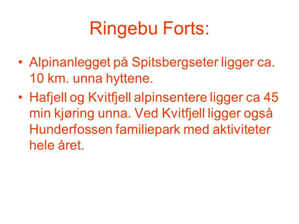 Ringebu Forts: Alpinanlegget på Spitsbergseter ligger ca. 10 km. unna hyttene. Hafjell og Kvitfjell alpinsentere ligger ca 45 min kjøring unna. Ved Kv