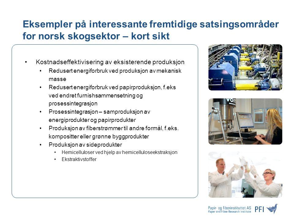 Eksempler på interessante fremtidige satsingsområder for norsk skogsektor – kort sikt Kostnadseffektivisering av eksisterende produksjon Redusert energiforbruk ved produksjon av mekanisk masse Redusert energiforbruk ved papirproduksjon, f.eks ved endret furnishsammensetning og prosessintegrasjon Prosessintegrasjon – samproduksjon av energiprodukter og papirprodukter Produksjon av fiberstrømmer til andre formål, f.eks.