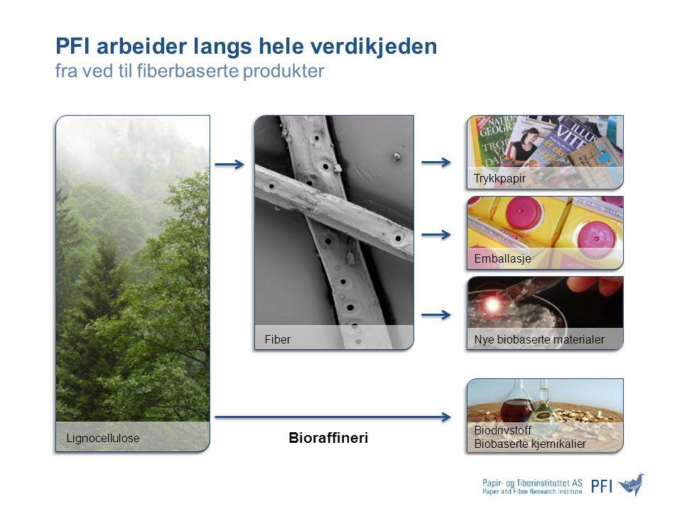 Behov for å sikre fremtidig innovasjon for norsk skogbasert industri Skognæringen er godt posisjonert for å kunne være en viktig, bærekraftig og levedyktig industri i fremtidens biobaserte samfunn Norsk skogbasert industri må omstille seg til produksjon av høyverdige produkter basert på høyteknologi og kompetanse.