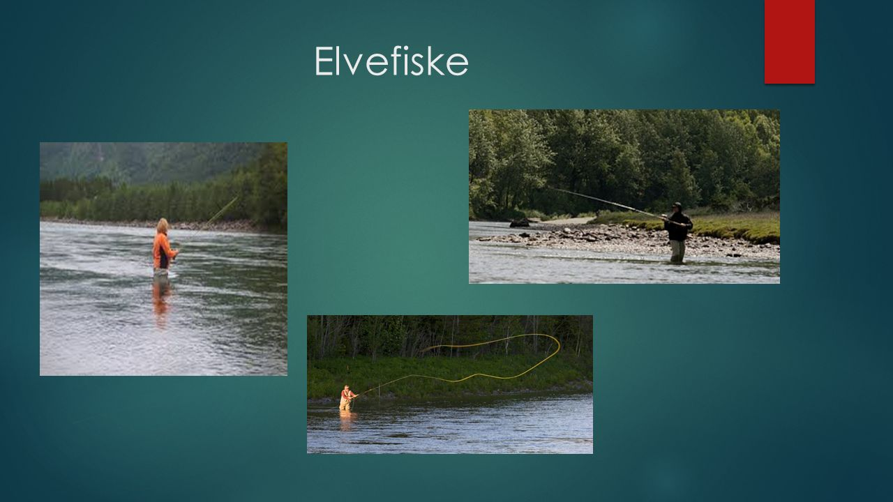Elvefiske