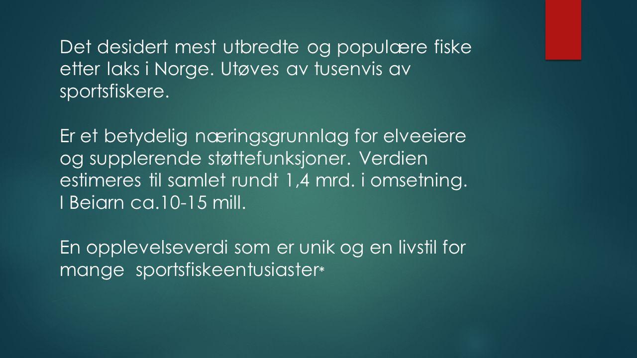 Det desidert mest utbredte og populære fiske etter laks i Norge.