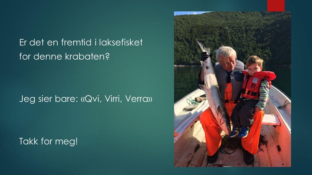Er det en fremtid i laksefisket for denne krabaten? Jeg sier bare: «Qvi, Virri, Verra» Takk for meg!