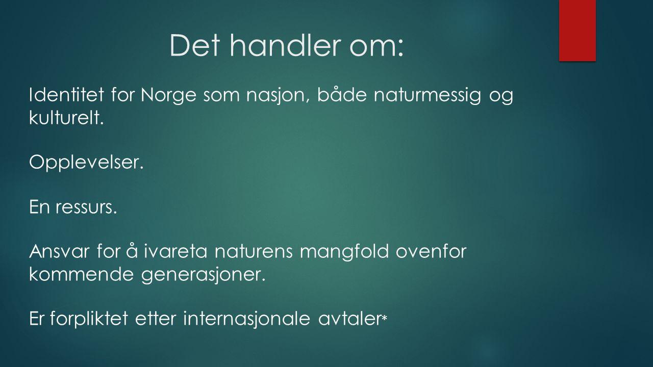 Det handler om: Identitet for Norge som nasjon, både naturmessig og kulturelt. Opplevelser. En ressurs. Ansvar for å ivareta naturens mangfold ovenfor
