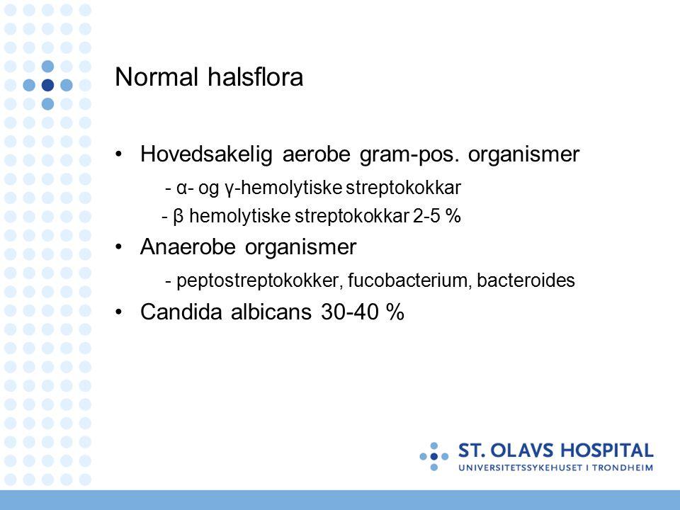 Normal halsflora Hovedsakelig aerobe gram-pos.