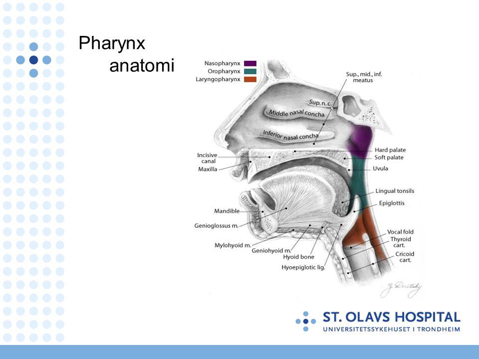 Akutt tonsillitt - indikasjon for behandling ≥4 av 5 kriterier* –feber >38.5° –forstørra tonsiller –tonsiller meir injisert enn bakre svelgvegg –tonsille-eksudat –forstørra, ømme framre cervikale lymfeknutar Begge disse manglar –rhinitt –hoste, heshet Tvilstilfeller –streptokokk antigentest * Retningslinjer for diagnostikk og behandling av sår hals.