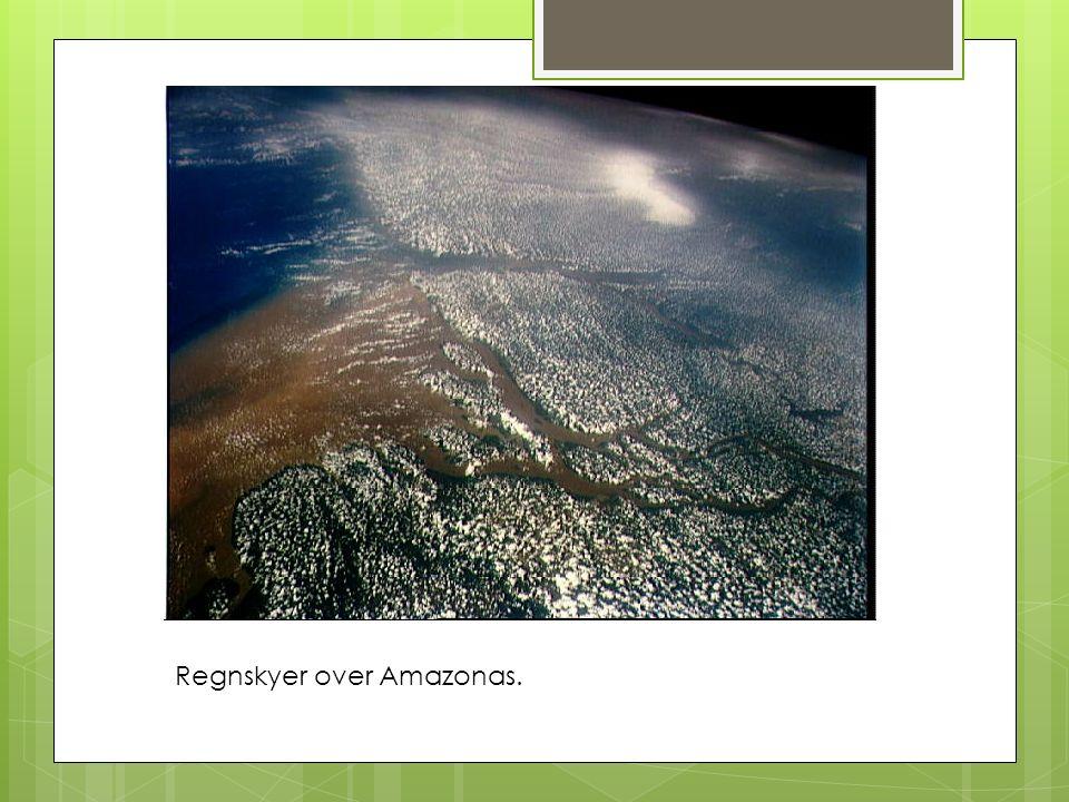 Regnskyer over Amazonas.