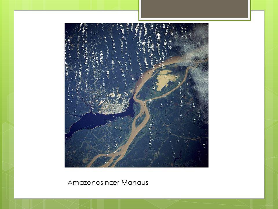 Amazonas nær Manaus