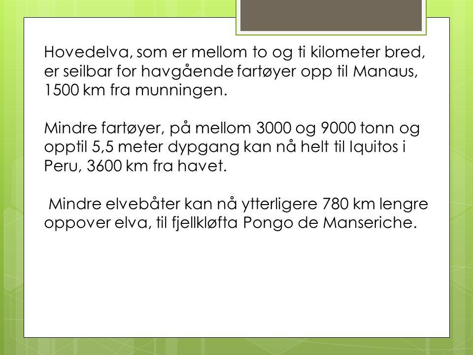 Hovedelva, som er mellom to og ti kilometer bred, er seilbar for havgående fartøyer opp til Manaus, 1500 km fra munningen.