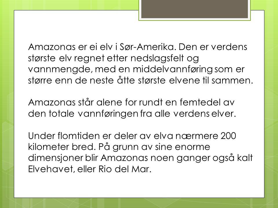 Amazonas er ei elv i Sør-Amerika.