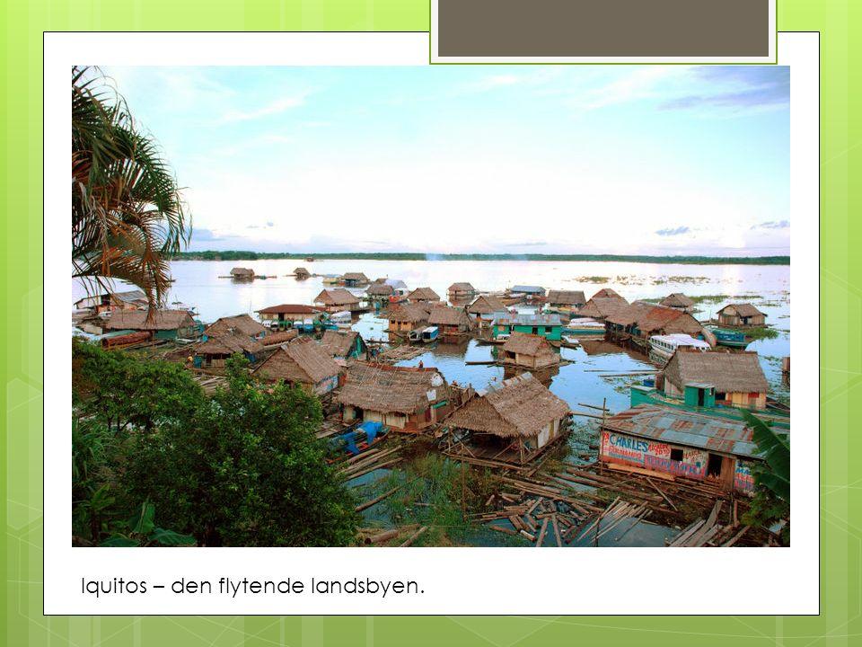 Iquitos – den flytende landsbyen.
