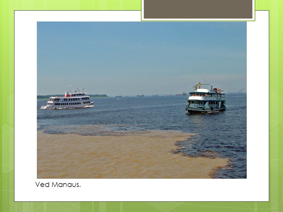 Ved Manaus.