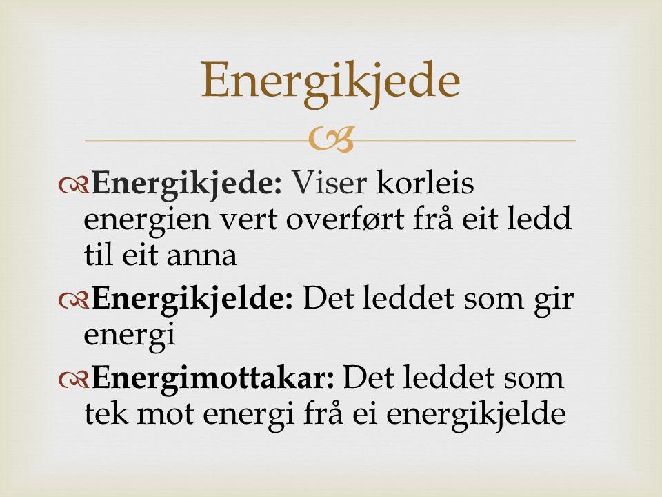   Energikjede: Viser korleis energien vert overført frå eit ledd til eit anna  Energikjelde: Det leddet som gir energi  Energimottakar: Det leddet