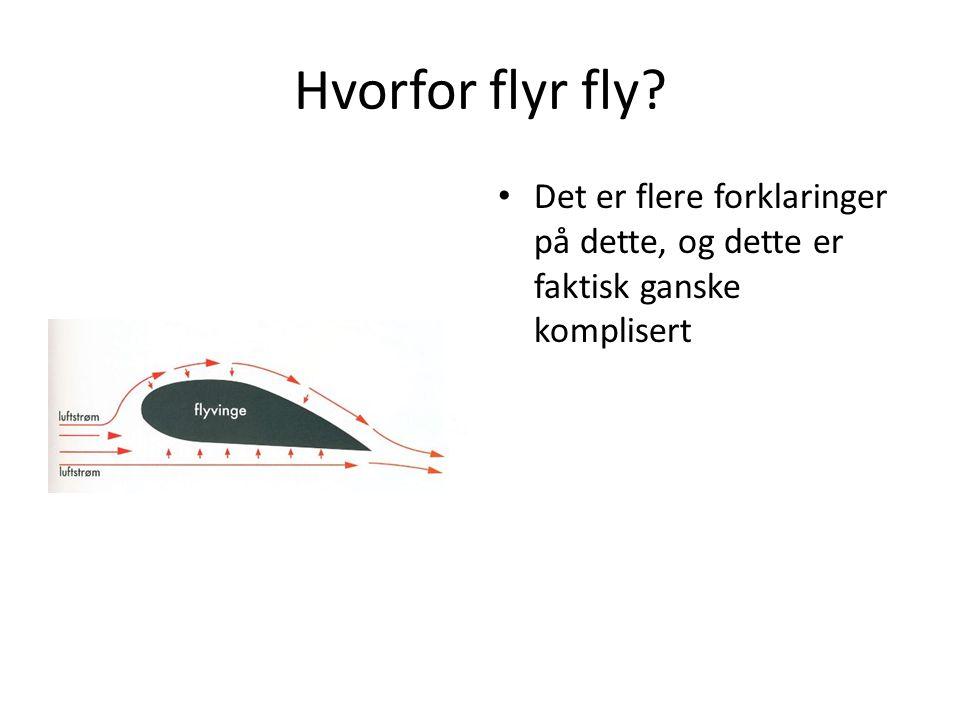 Hvorfor flyr fly Det er flere forklaringer på dette, og dette er faktisk ganske komplisert