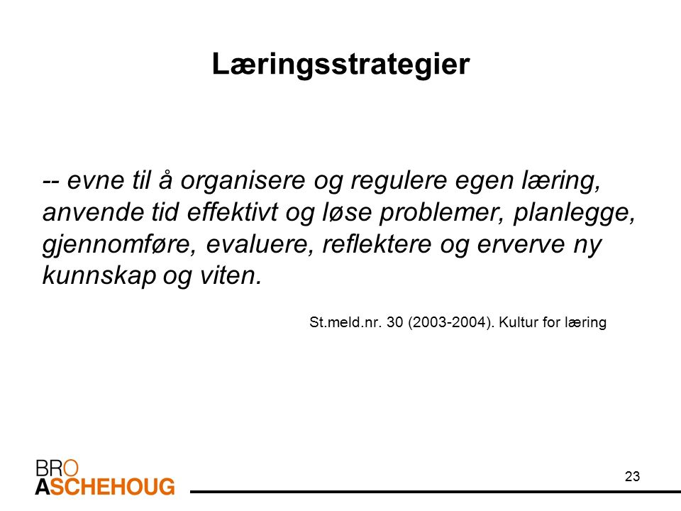 Læringsstrategier -- evne til å organisere og regulere egen læring, anvende tid effektivt og løse problemer, planlegge, gjennomføre, evaluere, reflekt