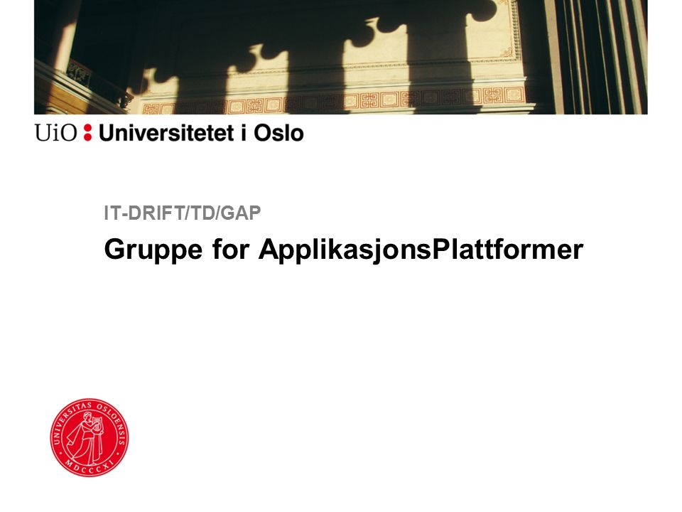 IT-DRIFT/TD/GAP Gruppe for ApplikasjonsPlattformer