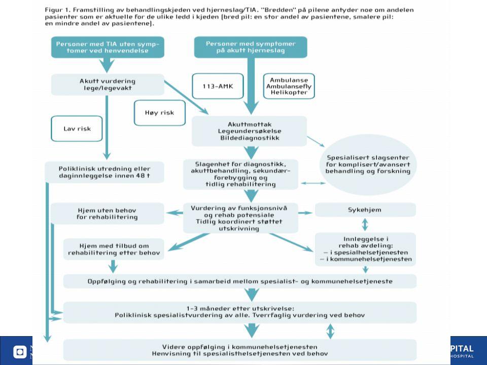 23. Utgitt 15 april 2010 Forskningsbaserte retningslinjer