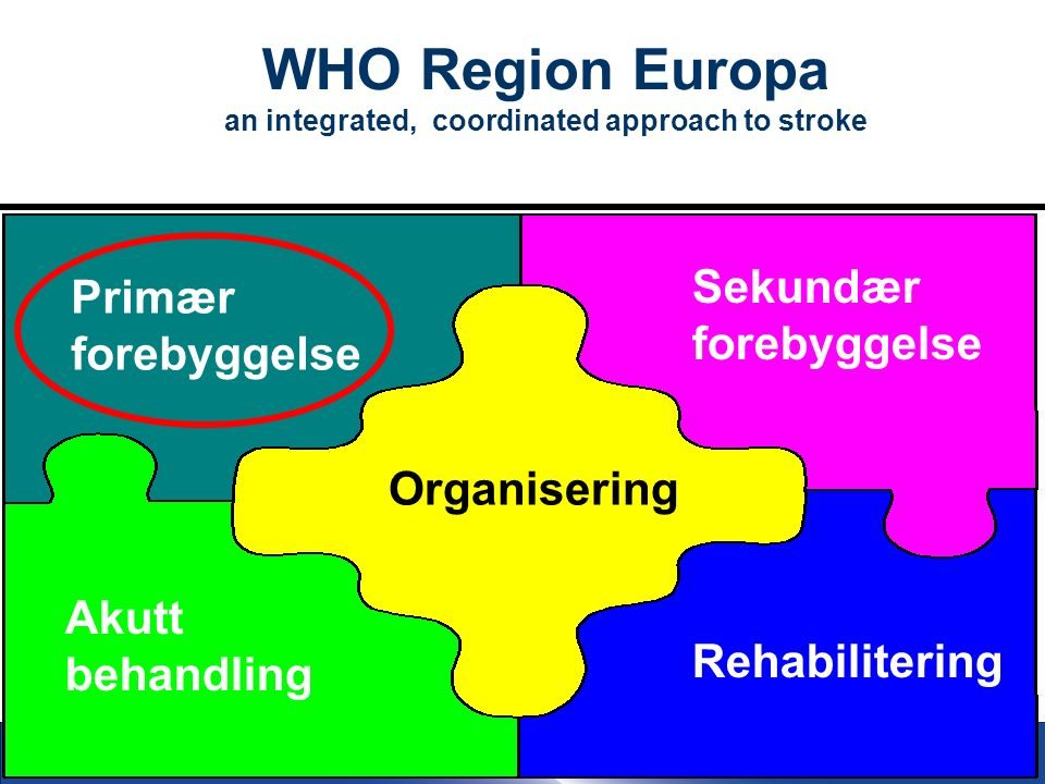 8 WHO Region Europa an integrated, coordinated approach to stroke Organisering Primær forebyggelse Sekundær forebyggelse Akutt behandling Rehabilitering