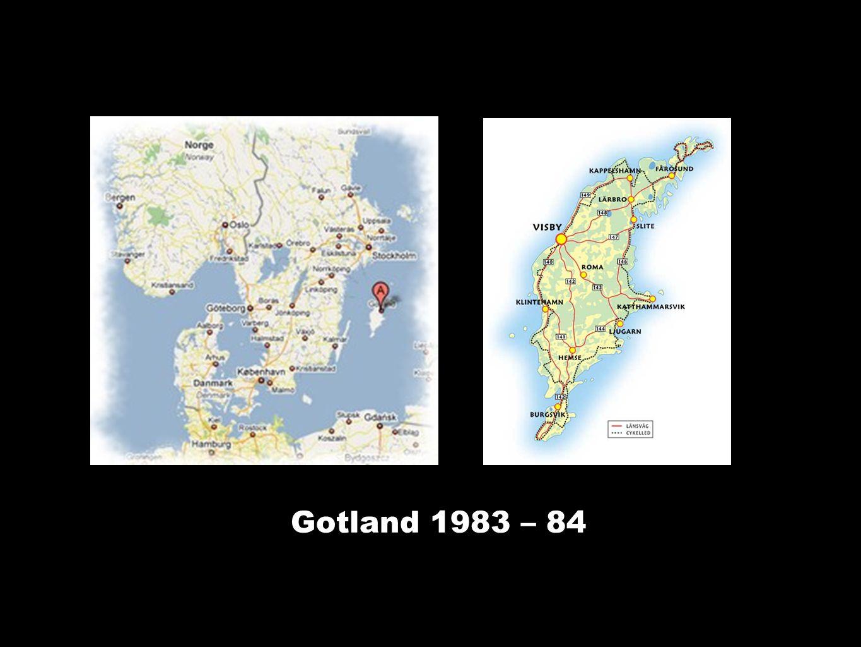 Gotland 1983 – 84 Tidlig oppdagelse og behandling av depresjon