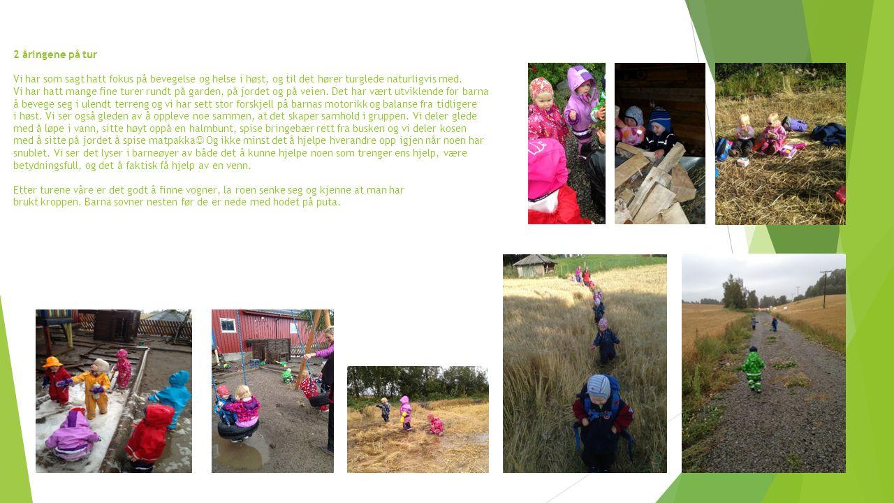 2 åringene på tur Vi har som sagt hatt fokus på bevegelse og helse i høst, og til det hører turglede naturligvis med.