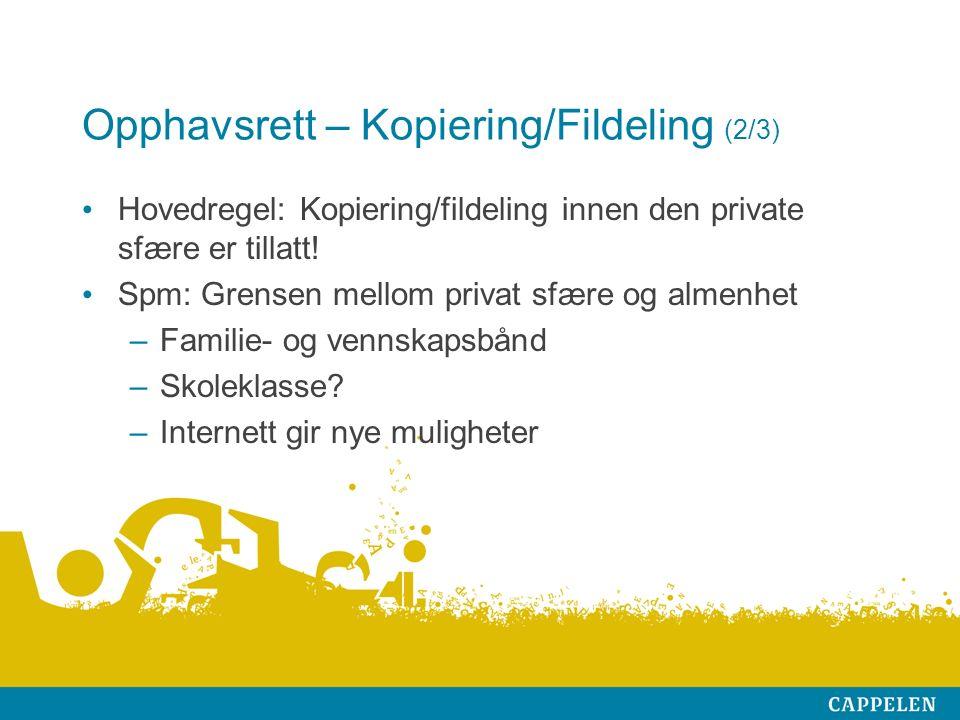 Opphavsrett – Kopiering/Fildeling (2/3) Hovedregel: Kopiering/fildeling innen den private sfære er tillatt.