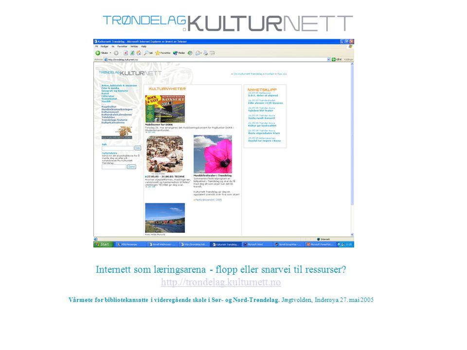 Internett som læringsarena - flopp eller snarvei til ressurser.