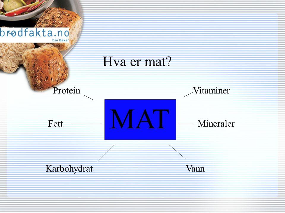 Hva er mat MAT Protein Fett Karbohydrat Vitaminer Mineraler Vann