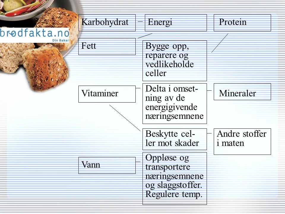 KarbohydratEnergiProtein Bygge opp, reparere og vedlikeholde celler Vann Vitaminer Fett Mineraler Andre stoffer i maten Delta i omset- ning av de energigivende næringsemnene Beskytte cel- ler mot skader Oppløse og transportere næringsemnene og slaggstoffer.