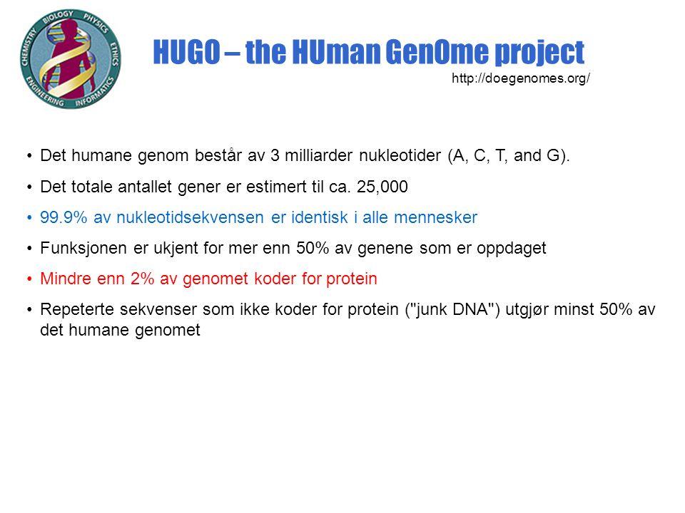 HUGO – the HUman GenOme project http://doegenomes.org/ Det humane genom består av 3 milliarder nukleotider (A, C, T, and G).