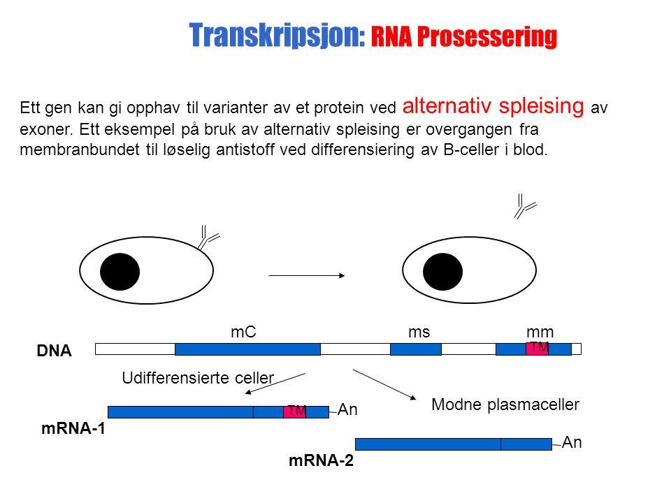 Ett gen kan gi opphav til varianter av et protein ved alternativ spleising av exoner.