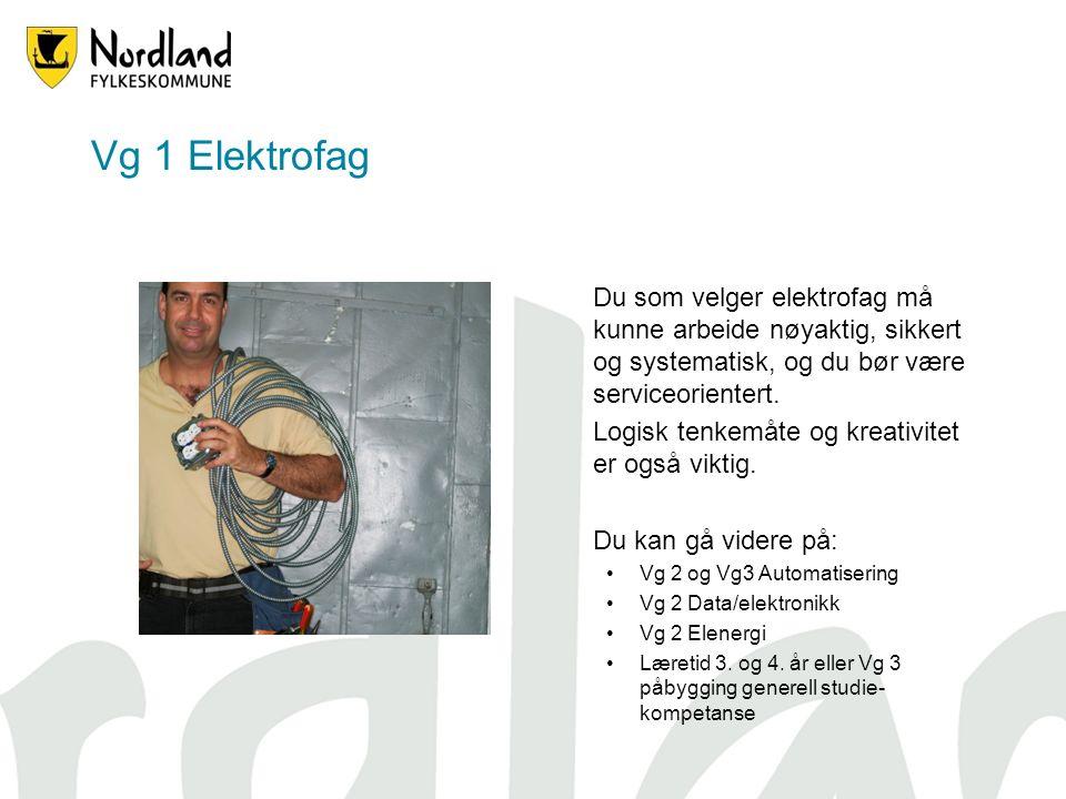 Vg 1 Elektrofag Du som velger elektrofag må kunne arbeide nøyaktig, sikkert og systematisk, og du bør være serviceorientert.